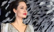 Angelina Jolie Claims She Has Proof Of Domestic Violence Against Brad Pitt - Sakshi