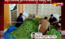 Anandayya Corona Medicine Preparation In Tirupati Narayana Gardens