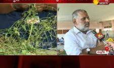 YSRCP MLA Chevireddy Bhaskar Reddy Face To Face