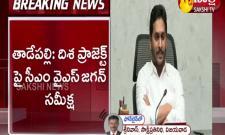 Andhra Pradesh CM YS Jagan Review Meeting On Disha Project