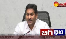 Sakshi Big Byte: AP CM YS Jagan About YSR Kapu Nestham