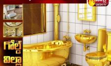 Gold toilet found in russian police bribery probe