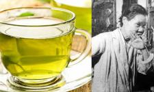 Michiyo Tsujimura Google Doodle Research On Green Tea Components - Sakshi