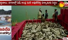 Fisheries Department Started Mini Outlets Of Selling Fishes In Vishaka