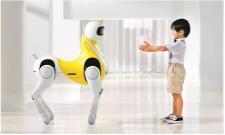 Unique Unicorn Robot Remote Control Toy - Sakshi