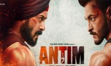 Salman Khan Vows To End Aayush Sharma Terror In Antim Trailer - Sakshi