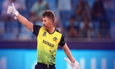 T20 World Cup 2021: Fans Happy David Warner Form Super Innings Vs SL - Sakshi