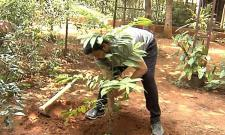 Megastar Takes Up The Green Challenge Photo Gallery - Sakshi