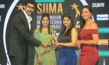 SIIMA AWARDS 2018 Curtain Raiser EVENT Photo Gallery - Sakshi