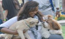 dogs park at kondapur Photo Gallery - Sakshi