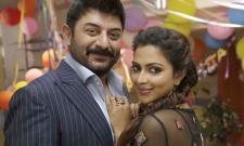 Bhaskar Oka Rascal Movie Stills Photo Gallery - Sakshi