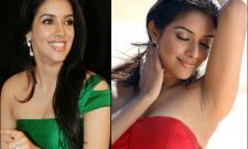 actress asin exclusive photo Gallery - Sakshi