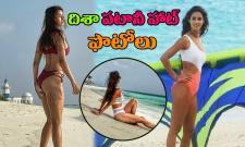 Disha Patani Hot Photos Photo Gallery - Sakshi