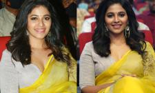 Vakeel saab Prerelease Event Anjali Photo Gallery - Sakshi