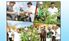 Amitabh Bachchan Join Green India Challenge with Nagarjuna and MP Santhosh Kumar Photo Gallery - Sakshi