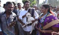 YS Jagan Padayatra Successfully Run In Saluru - Sakshi