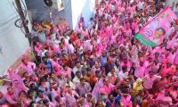 trs winning celebrations Photo Gallery - Sakshi