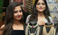 Preethi Asrani inaugurate The Haat Expo at Taj Krishna Photo Gallery - Sakshi