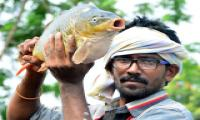 Best Photos of The Week in AP and Telangana june-16-june-22-2019 - Sakshi