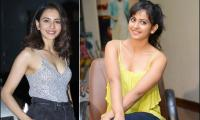 actress Rakul preet singh exclusive photo gallery - Sakshi