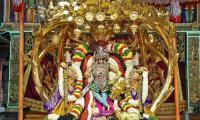Kalpavriksha Vahanam at Tirumala Brahmotsavam Photo Gallery - Sakshi