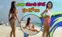 Disha Patani Hot Photos Photo Gallery - Sakshi