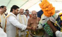 CM YS Jagan Participated In Go Puja At Narasaraopet - Sakshi