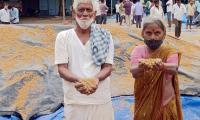 Farmers Huge Crop Loss due to Rains  - Sakshi