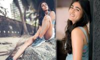 Shalini pandey latest Photo Gallery - Sakshi