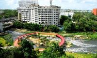 Rain garden at Begumpet Nala turns feast for eye - Sakshi