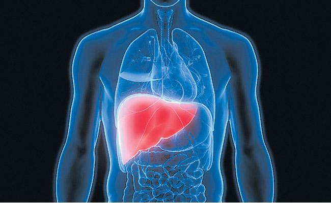 People with diabetes must be more careful with liver tests - Sakshi