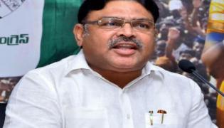 AP CM handrababu Political non vegetarian : Ambati