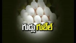 Eggs price increased in Hyderabad - Sakshi