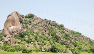 Sakshi Special Story on Telugu Language - Sakshi