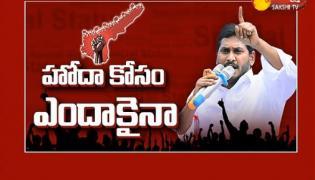 Chandrababu political drama on special status - Sakshi