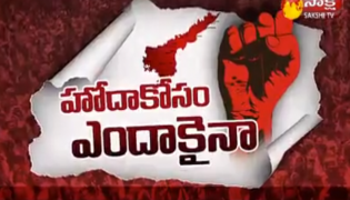 Special Discussion on Special Status for AP - Sakshi