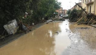 Rain In Andhra Pradesh - Sakshi
