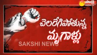 The Fourth Estate 4th May 2018 Rape Cases in Chandrababu Government - Sakshi