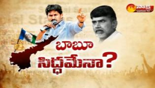 Debate on TDP Compete With YSRCP in By-Elections Says Chandrababu - Sakshi