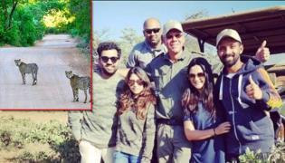 Rohit Sharma, Ajinkya Rahane,Ravindra Jadeja, had gone for a jungle safari in South Africa - Sakshi