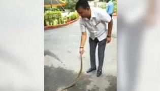Video of Gujarat Congress Leader Subduing Snake Outside Home Goes Viral - Sakshi