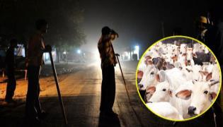 Alwar lynching: SC to Hear Contempt Petition - Sakshi