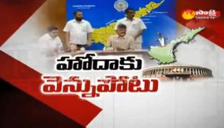 Discussion about Cm chandrababu naidu politics on special status issue - Sakshi