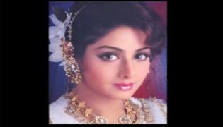 Sridevi's Fan Accused IIFA For Copying Her Tribute Video, Boney Kapoor Responds To The Allegation - Sakshi