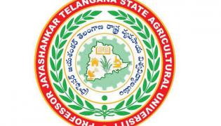 Counseling for various courses in Agricultural University - Sakshi