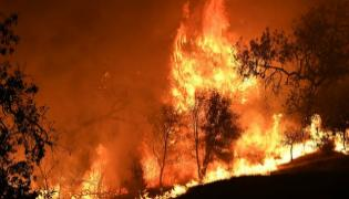 630 missing in California wildfire as death and damage tolls rise - Sakshi