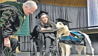 Dog Griffin Gets Honorary diploma From Clarkson University - Sakshi