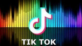 Tamil Nadu Will Try to Ban TikTok App - Sakshi