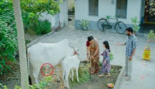 BJP Counter To  TDP Chandranna Pasupu Kumkuma Advertisement - Sakshi