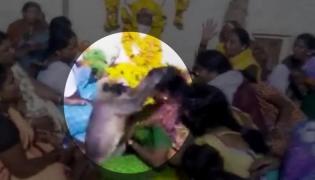 Monkey Consoles Woman At Karnataka Funeral - Sakshi